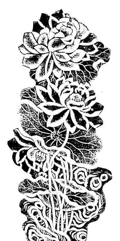 手绘 盛开 荷花 经叶 黑白图