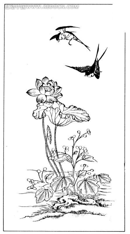白色背景 矢量文件 手绘插画 荷花花瓣线条 鸟儿 传统图案 矢量素材