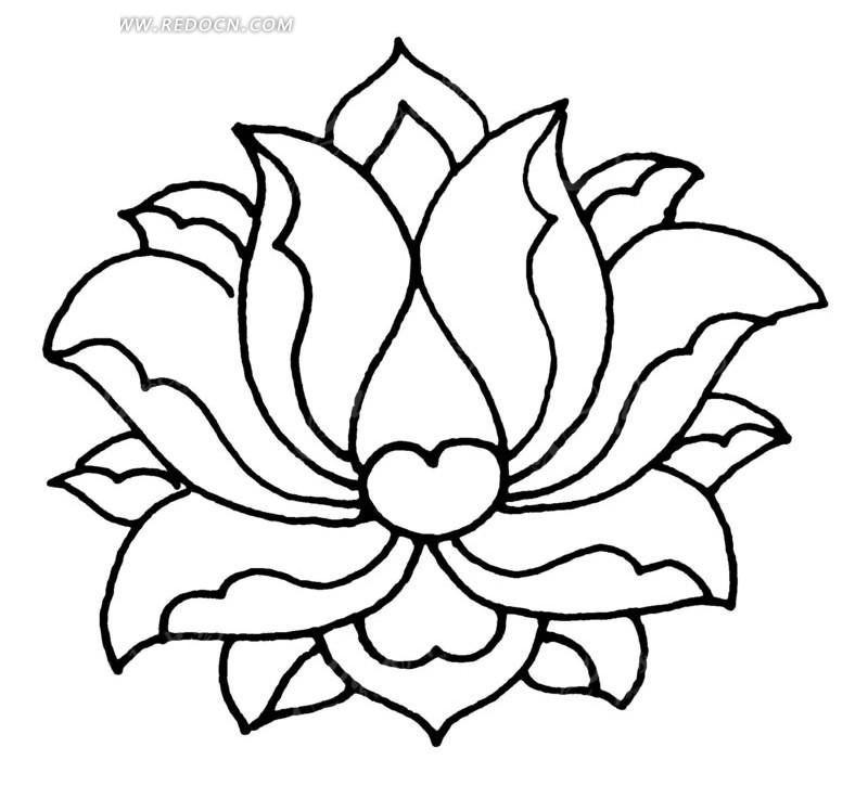 手绘的盛开的莲花图案