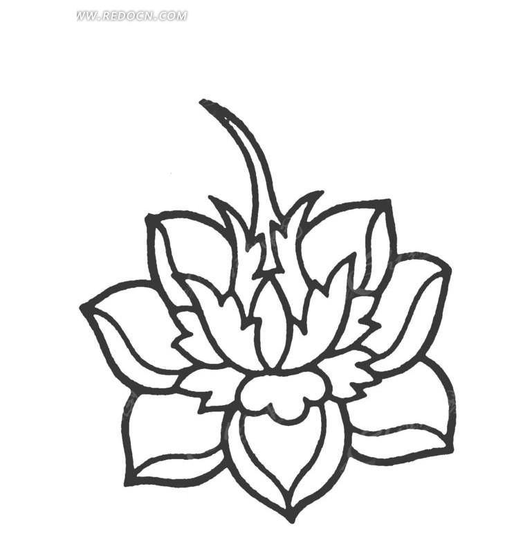 线描玫瑰花