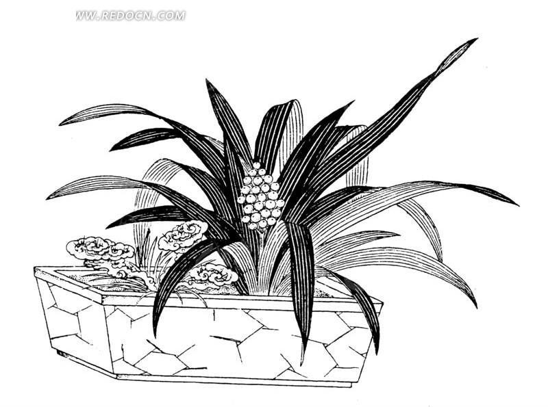 手绘花盆简单图案素材