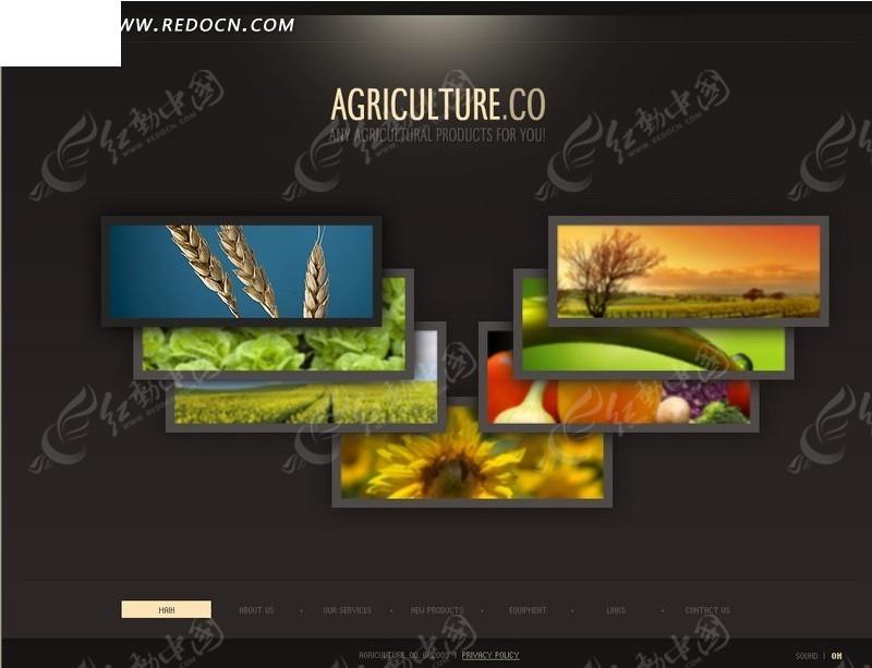 农业在线网页模板