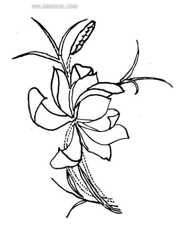 花朵盛开 植物 叶子 手绘 线描图 传统图案 矢量素材