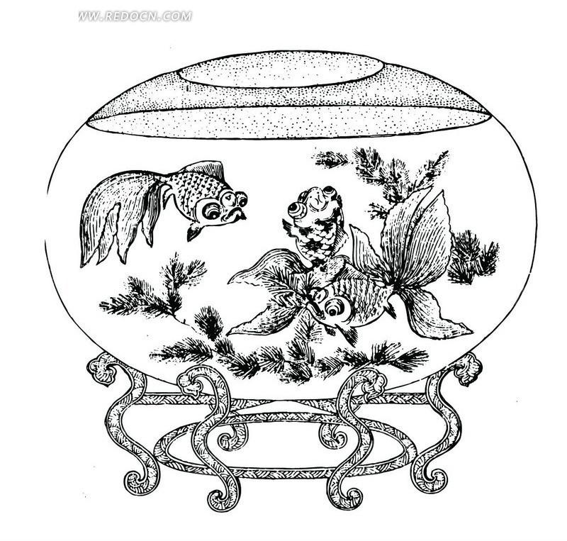 手绘古代鱼缸里的金鱼和水草矢量图