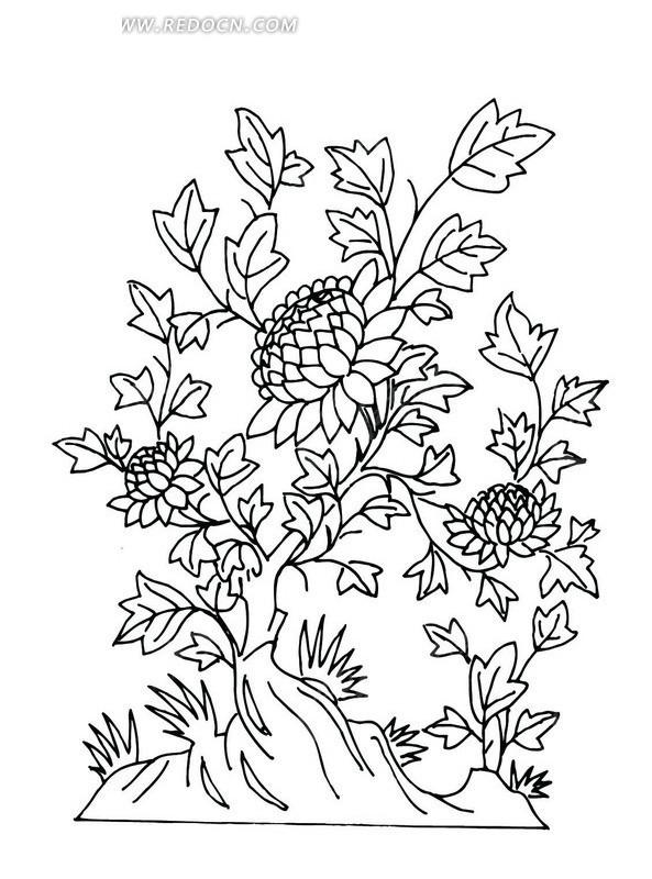 手绘叶子和怒放的花朵矢量图