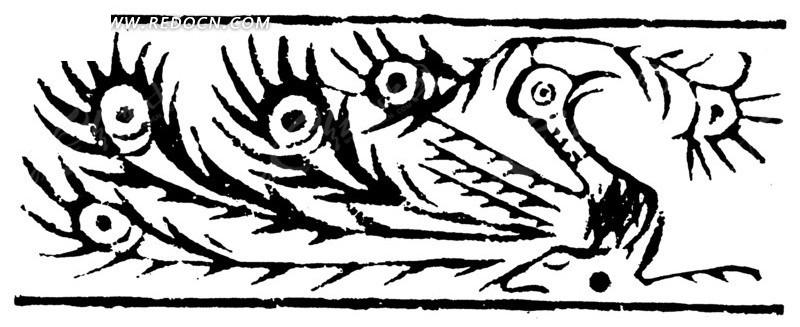 孔雀黑白线条图