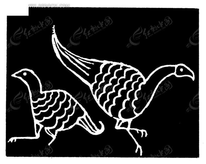 手绘黑色背景上两只白色线条的鸟