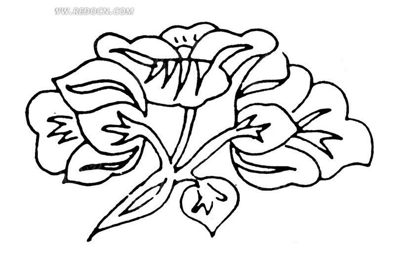 开花的植物线描图