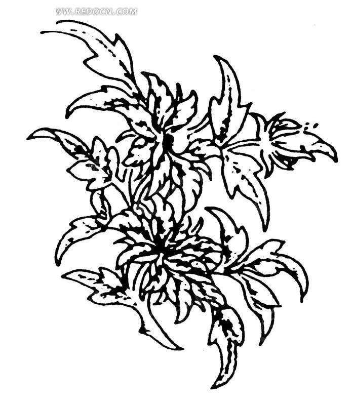 免费素材 矢量素材 艺术文化 传统图案 树枝上茂盛的叶子线描图