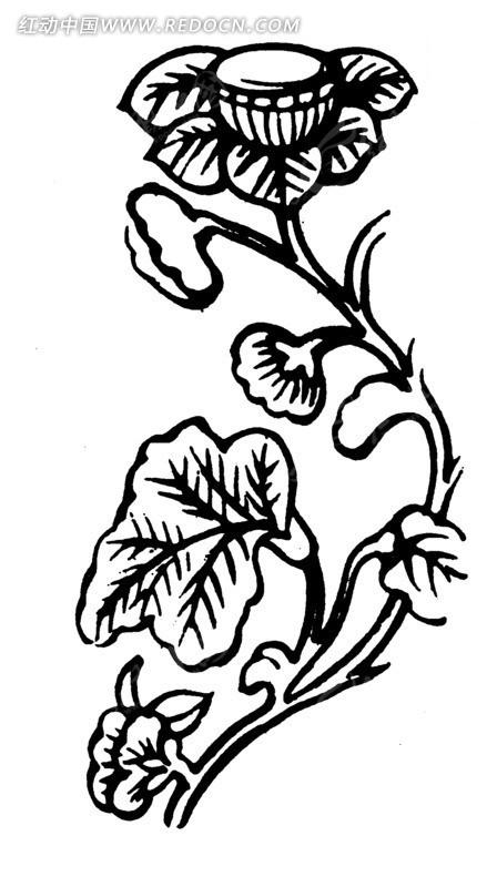 手绘藤蔓枝叶上莲花莲实ai素材免费下载_红动网