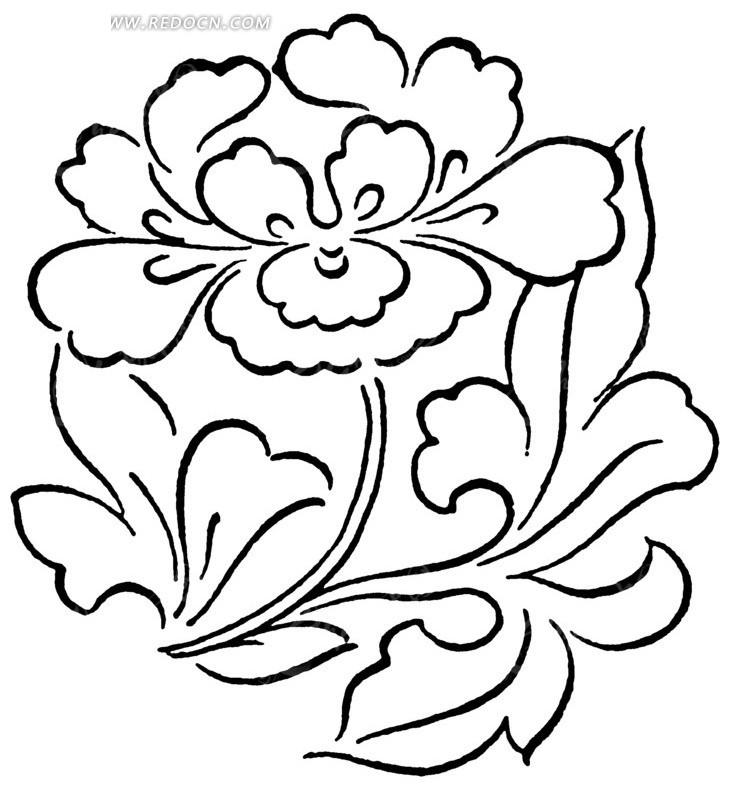 牡丹图片简笔画手绘