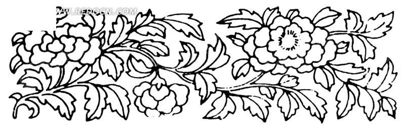 手绘 牡丹 花枝 花卉 横幅 传统图案 矢量素材