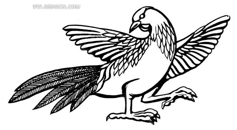 线描 长尾雉 鸟 矢量 插画 传统图案 矢量素材