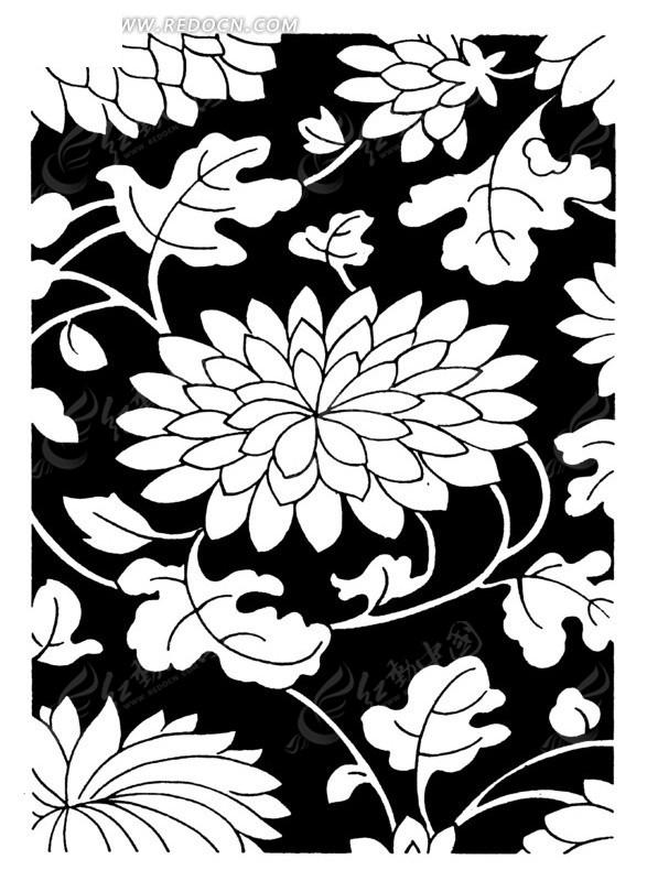 盛开的花朵 手绘图