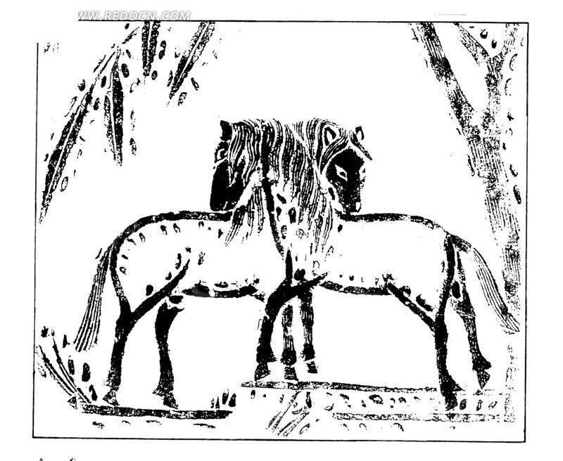 手绘两匹野马插画线条
