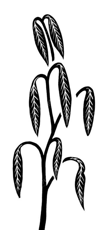免费素材 矢量素材 艺术文化 传统图案 手绘树叶下垂的植物