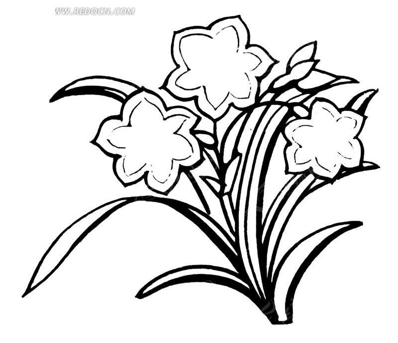矢量花朵花卉线条图形AI素材免费下载 编号1525279 红动网