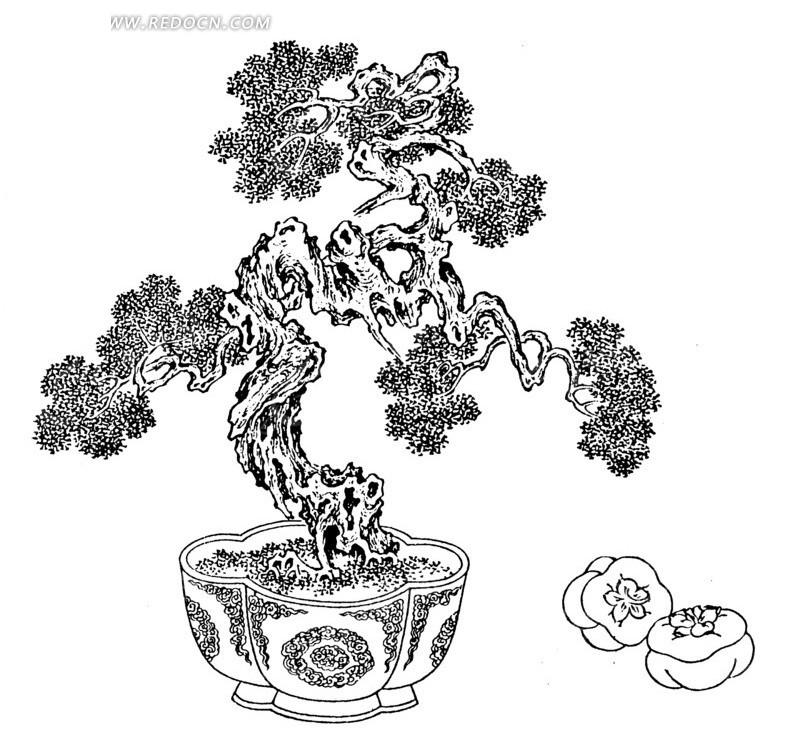盆栽手绘图图片