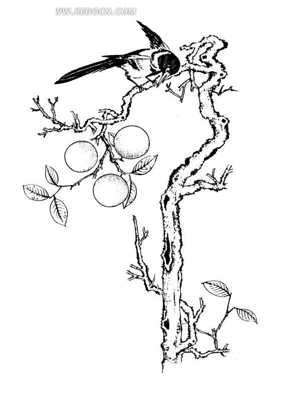 免费素材 矢量素材 艺术文化 传统图案 挂着果实的树枝上停立着小鸟