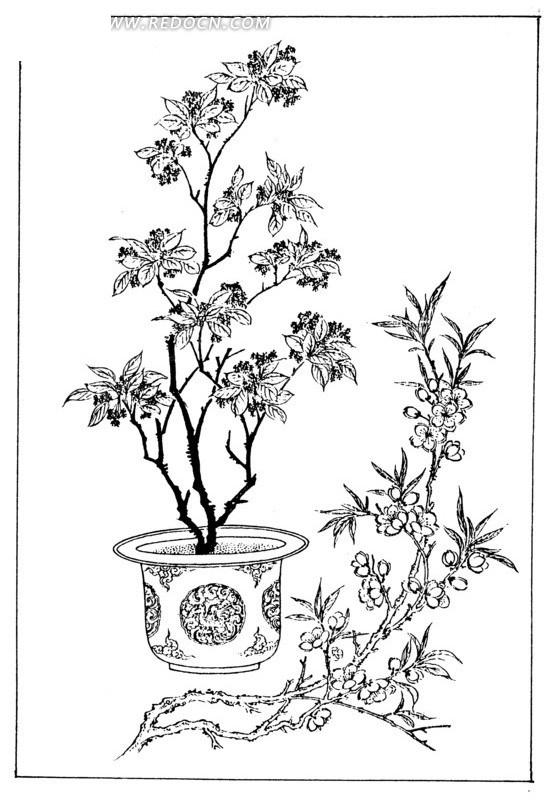 盆栽与树枝白描图矢量图