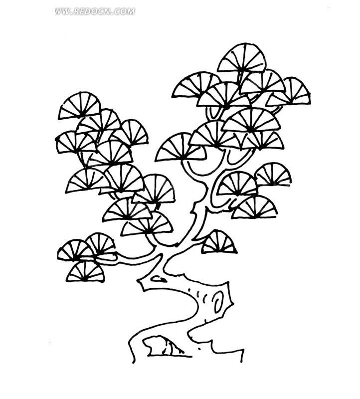 画松树的步骤简笔画