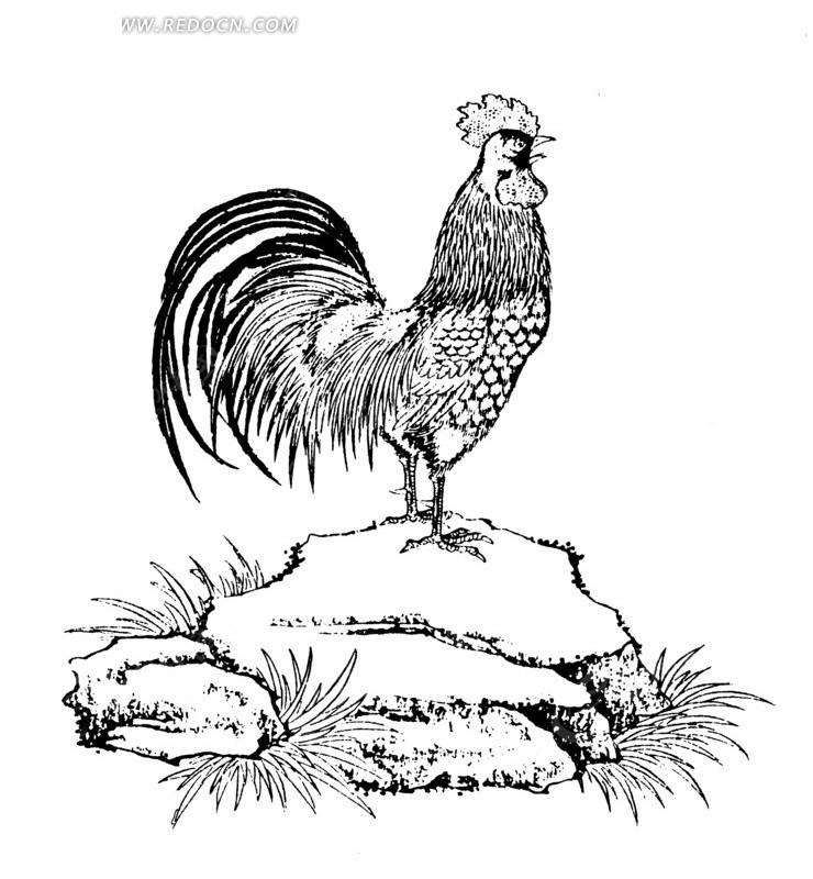 石头上的雄鸡 传统图案|纹样矢量图下载编号: