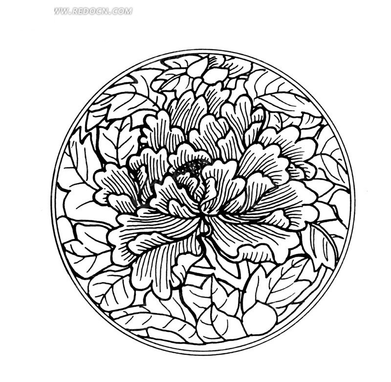桂花手绘彩色铅笔