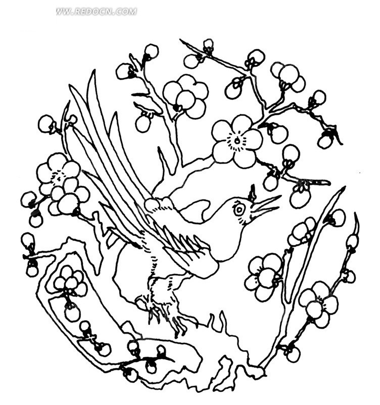 梅花树上的长尾鸟