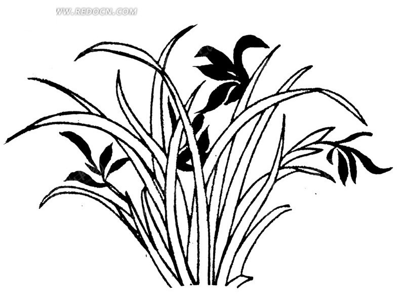 黑白木刻版画兰花