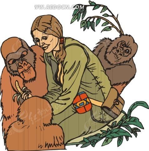 美女和大猩猩图片