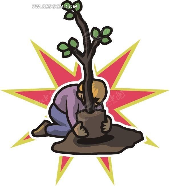 种树的基本步骤图片