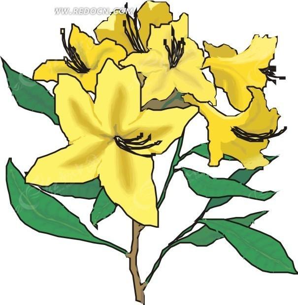 黄色花朵 花 鲜花 卡通画 插画 手绘 矢量素材