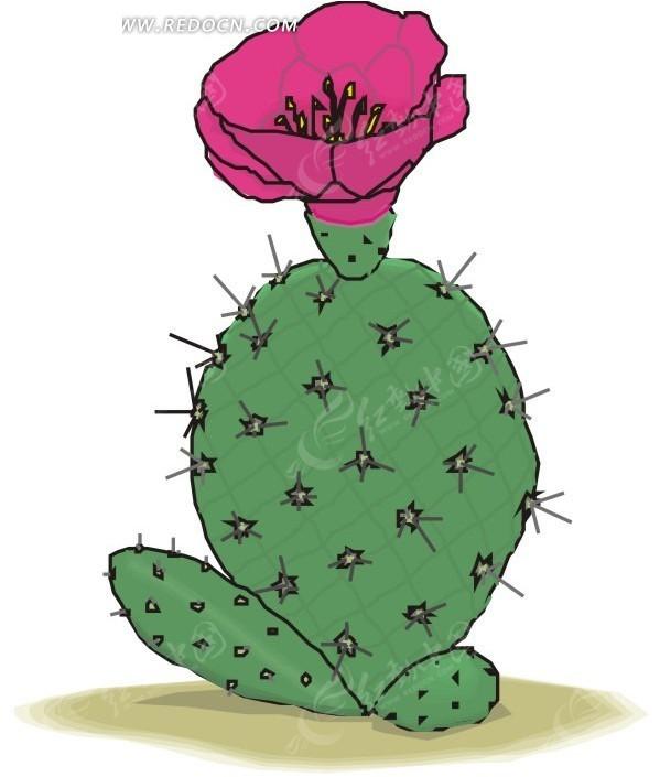 手绘仙人掌花