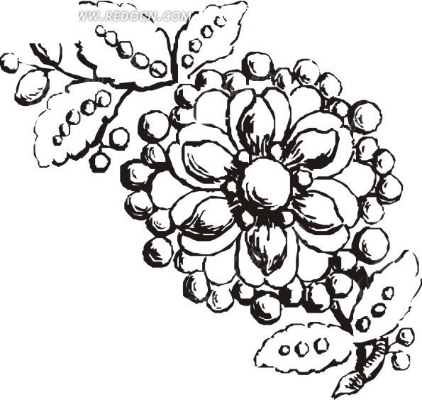 手绘树枝上果子围绕的花朵