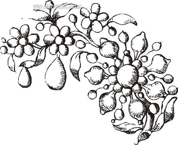 手绘树枝上的花朵和果子