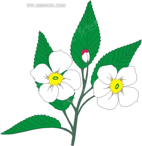 白色手绘花朵和绿叶矢量图_花草树木; 卡通树叶矢量素材树叶矢量素材