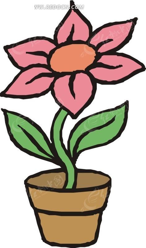 手绘花盆里的粉色花朵