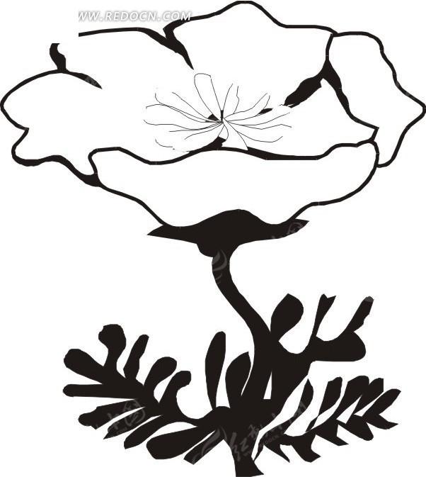 手绘黑白花朵矢量图eps免费下载
