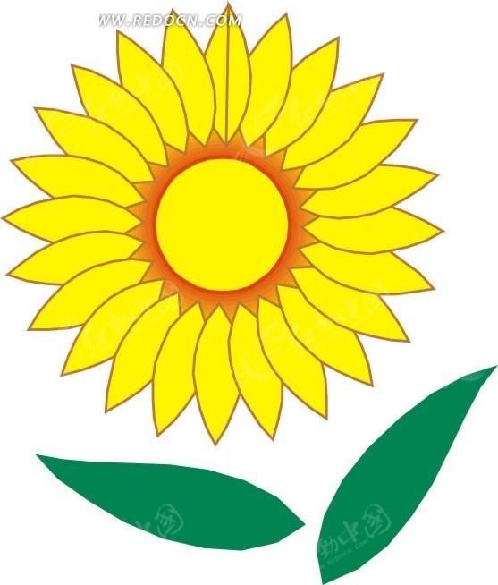 黄色向日葵花 叶子 卡通画