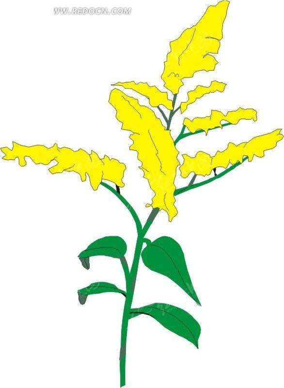 植物 卡通画