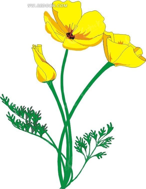 黄色手绘花朵和绿叶