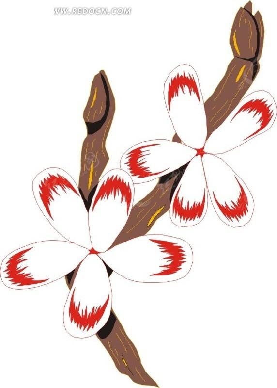 红色花边的手绘白色花朵矢量图_花草树木