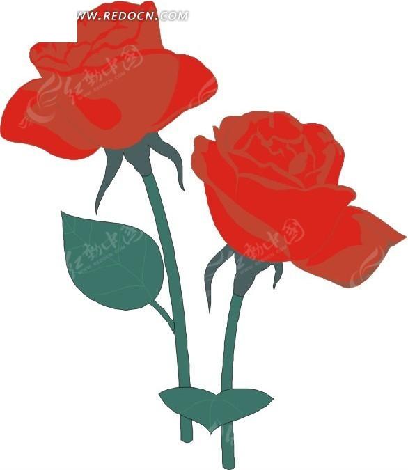 红色手绘月季花图片