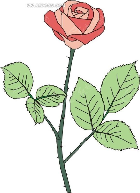 放在五线谱上的玫瑰花-含苞待放的粉色玫瑰EPS素材免费下载 编号1545907 红动网