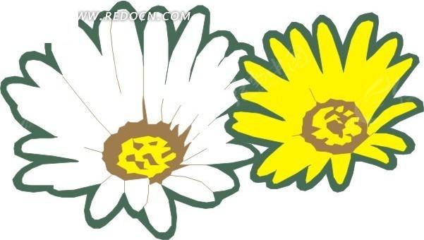 手绘黄色和白色非洲菊