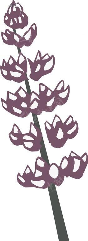 手绘一串紫边白色花朵