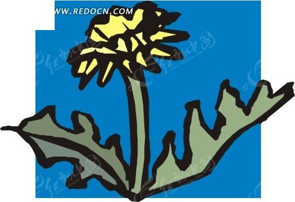 手绘蓝色背景上的蒲公英花朵