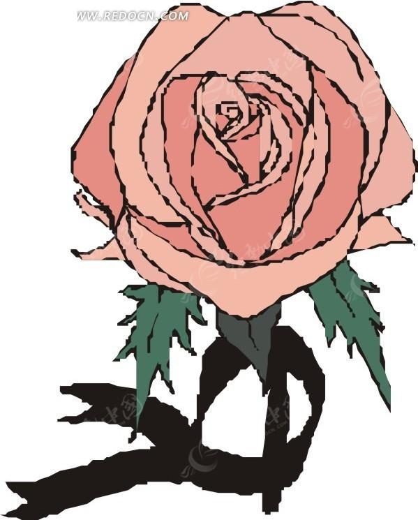 手绘粉色月季花