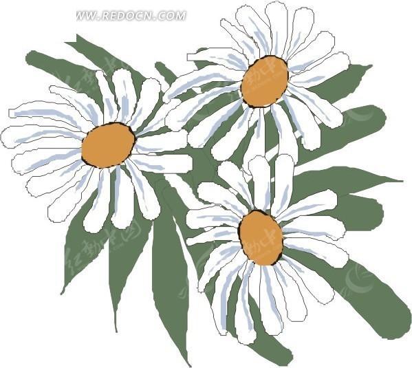 墨绿色叶子 白色花朵 花 鲜花 卡通画 插画 手绘 矢量素材
