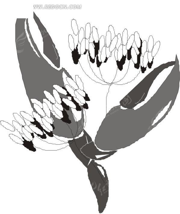 大写意手绘花朵与叶蔓黑白图案